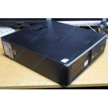 Компьютер HP Compaq 6000 SFF (Intel Pentium Dual Core E5400 (2x2.7GHz) /2Gb /320Gb /ATX 240W minidesktop /WINDOWS 7 PRO) - Калининград